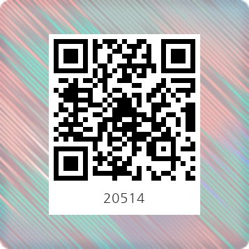 20514정빈광